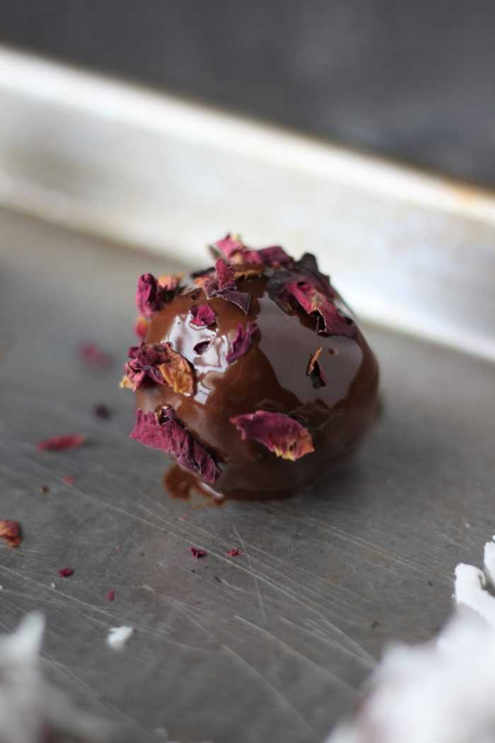 Red Rose Leaves on Stout Brownie Pop