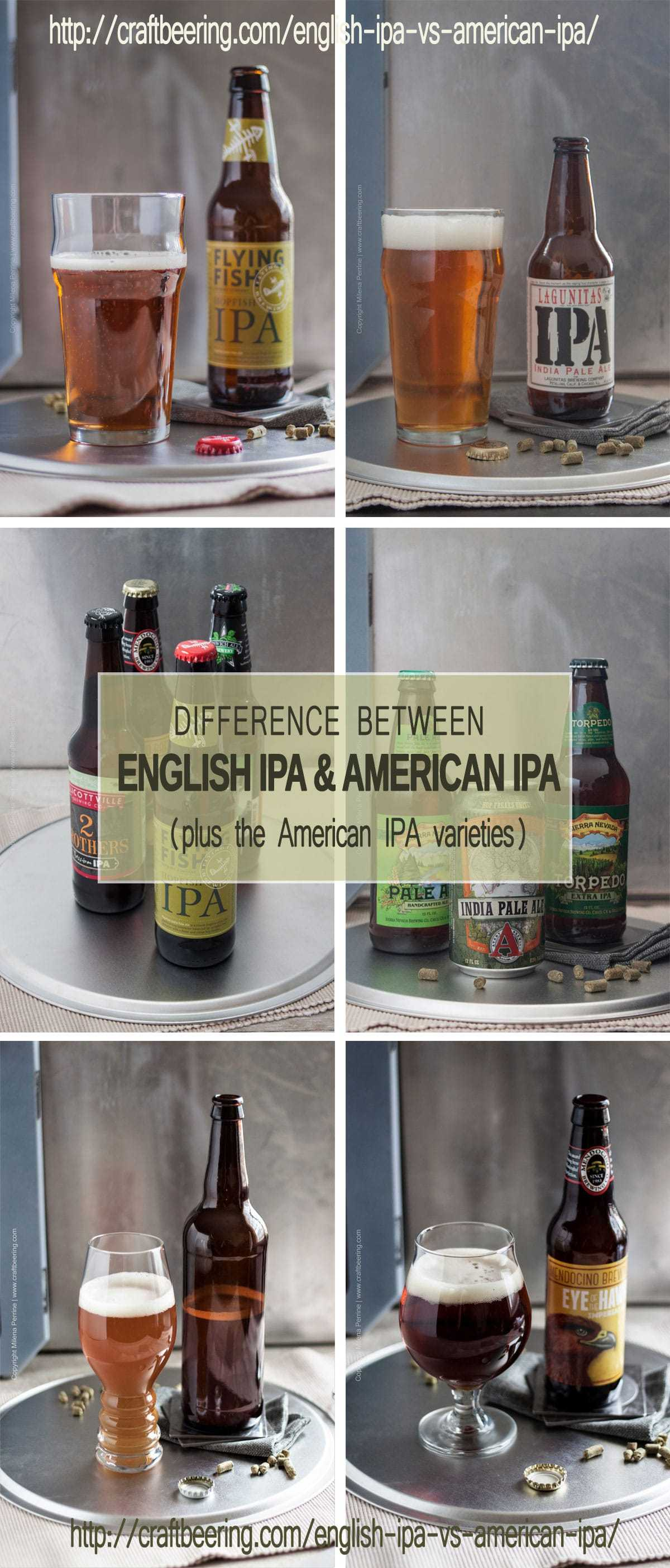 What is the difference between English IPA and American IPA? Which one do I prefer? How about all the different American IPA styles? Find the answers in this post on English IPA vs American IPA.