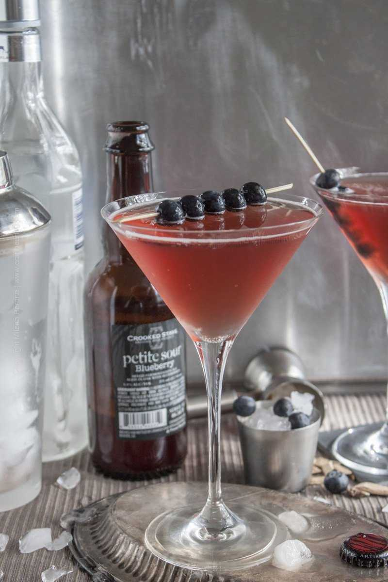 Vodka Beertini with Blueberry Petite Sour