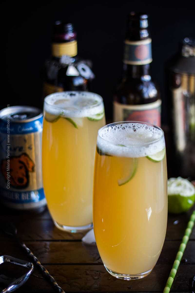 IPA Cocktail with rum and ginger beer #ipacocktail #stormyIPA #beercocktail