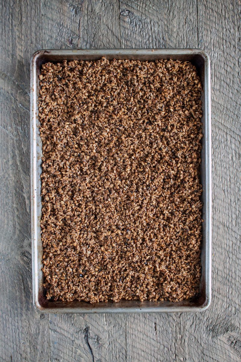Spent Grain Flour How to Make It, How to use it and more. #spentgrainflour #spentgrain
