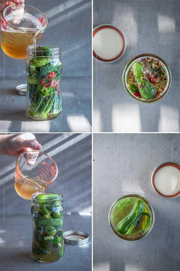 Beer pickles - steps to prepare image grid.