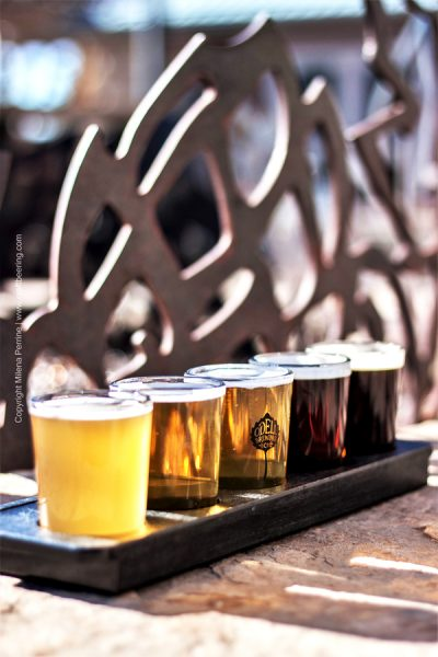 Beer tasting flight - to understand the flavor definition you must understand various sensory input such as taste, aroma, mouthfeel.
